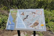 Harmony Headlands State Park, Harmony, United States
