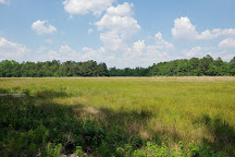 Little Pee Dee State Park, Dillon, United States