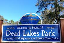 Dead Lakes Recreational Area, Wewahitchka, United States
