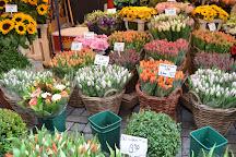 Flower Market / Bloemenmarkt, Amsterdam, The Netherlands