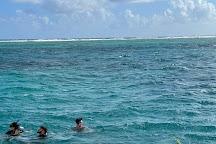 Marinarium Excursions Snorkeling Cruise, Punta Cana, Dominican Republic