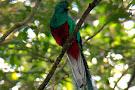 Pasion Costa Rica