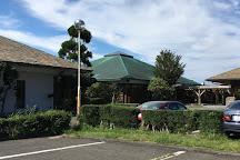 Nakaizu Green Club, Izu, Japan