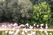 Zoobotanico Jerez, Jerez De La Frontera, Spain