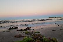 Madryn Buceo, Puerto Madryn, Argentina