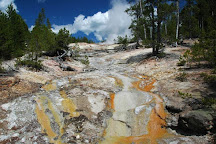 Steamboat Geyser, Yellowstone National Park, United States