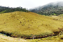 Horton Plains National Park, Nuwara Eliya, Sri Lanka