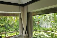 Banyan Tree Spa Phuket, Thalang District, Thailand