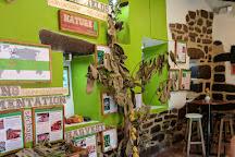 Choco Museo, Ollantaytambo, Peru
