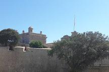 National Museum of Natural History, Mdina, Malta
