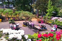 Reuthe's Lost Gardens of Sevenoaks, Sevenoaks, United Kingdom