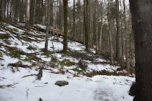 Cady Hill Forest, Stowe, United States