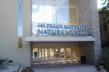 The Peggy Notebaert Nature Museum, Chicago, United States