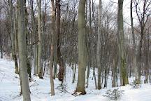 Rezerwat Chelmowa Gora, Nowa Slupia, Poland