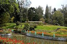 Sim`s Park, Coonoor, India