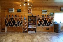 Venditti Vineyards, Theresa, United States