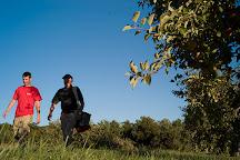 McDougal Orchards, Springvale, United States