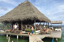 Parque Nacional Marino Isla Bastimentos, Bocas Town, Panama