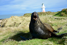 Waipapa Point Lighthouse, Invercargill, New Zealand