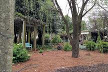 McGill Rose Garden, Charlotte, United States