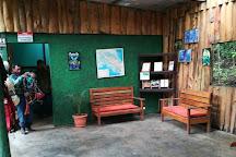 The Original Canopy Tour, Monteverde, Costa Rica