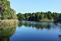 Crystal River Preserve State Park, Crystal River, United States