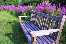 Le Jardin du Batiment, Thire, France