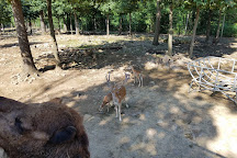 Catoctin Wildlife Preserve, Thurmont, United States