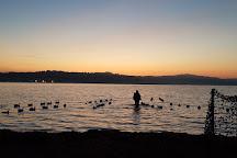 Humboldt Bay, Eureka, United States