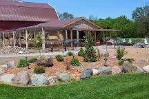 Munson Bridge Winery, Withee, United States