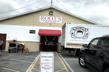 Root's Country Market & Auction, Manheim, United States