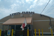 Lewin Farms, Wading River, United States