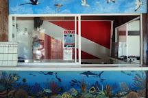 Risas Diving, Playa del Carmen, Mexico