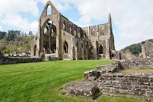 Tintern Abbey, Tintern, United Kingdom