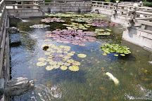 Western Lotus Pond Garden, Hong Kong, China
