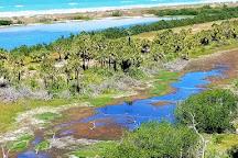 Anclote Key Preserve State Park, New Port Richey, United States