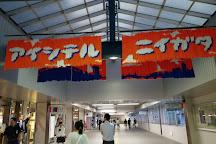 Ponshukan Niigata Station, Niigata, Japan