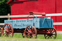 Coleman's Christmas Tree Farm, Middletown, United States