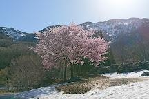 Mt. Makihata, Minamiuonuma, Japan