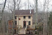 EarthJOY Tree Adventures, Germantown, United States