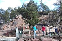Bergvang Gaard Activity Farm, Asker Municipality, Norway