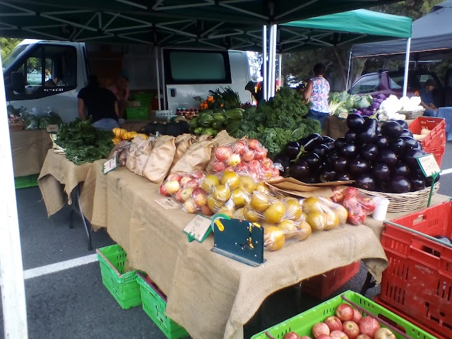 The Gisborne Farmers Market
