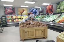 Visit fligners market on your trip to lorain or united states fligners market lorain united states junglespirit Images