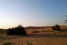 Dubai Desert Conservation Reserve, Dubai, United Arab Emirates