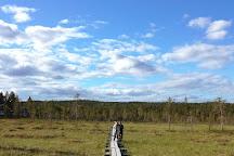 Lapland Safaris Yllas, Akaslompolo, Finland