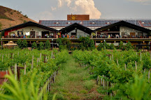 Sula Vineyards, Nashik, India