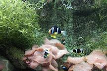 Zhengzhou Aquarium, Zhengzhou, China