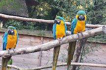 Zoo Veldhoven, Veldhoven, The Netherlands