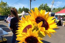 Zionsville Farmers Market, Zionsville, United States