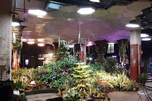 The Lowline Lab, New York City, United States